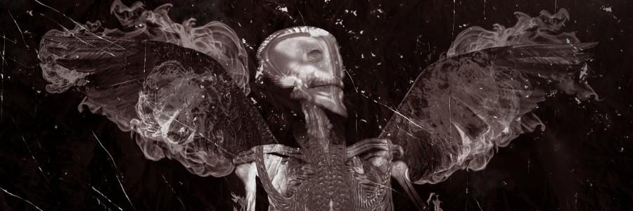 skull-1391722_1280