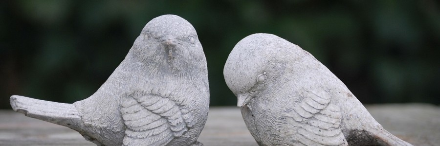 birds-216412_1280