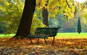 autumn-1877749_1280