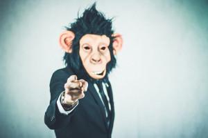 monkey-2710657_640